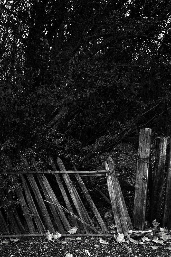 clunes-fence-copy.jpg